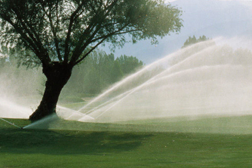a sprayer wetting the lawn